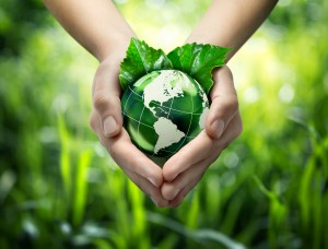 3 Reasons Why Lord Baltimore is an Excellent Partner of Green Initiatives for Your Business
